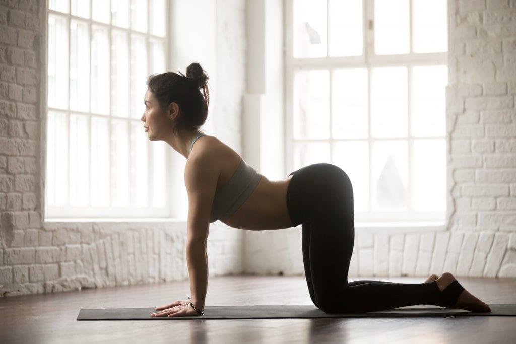 tu-the-cat-cow-yoga